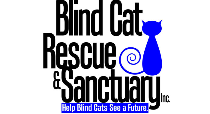 blindcatrescue01